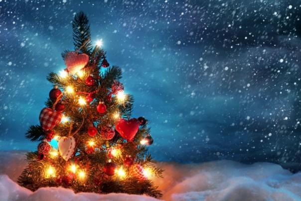 Датские учёные отыскали вчеловеческом мозге «дух Рождества»