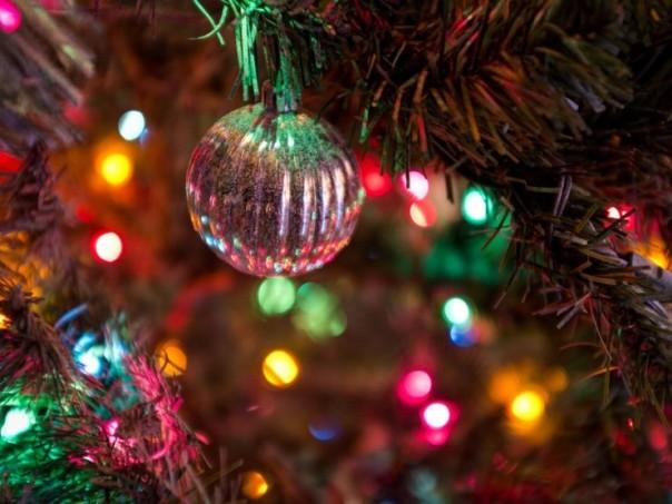 Главную новогоднюю елку Российской Федерации наавтопоезде доставят вКремль