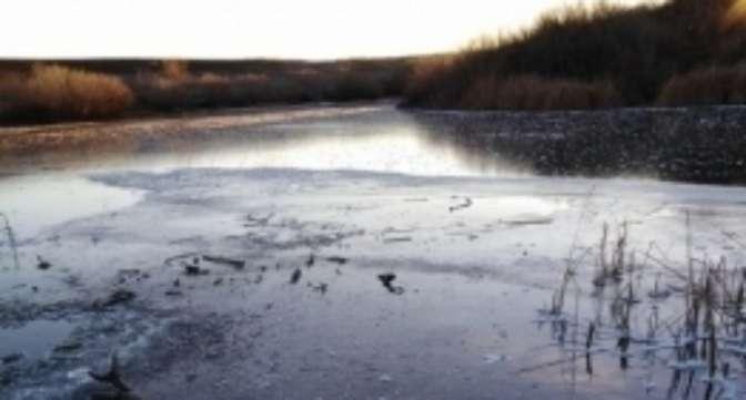 Пропавших нареке вПервомайском районе детей разыскивают водолазы