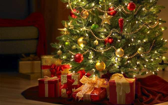 ВГермании ребёнок остался недоволен рождественскими подарками ивызвал полицию