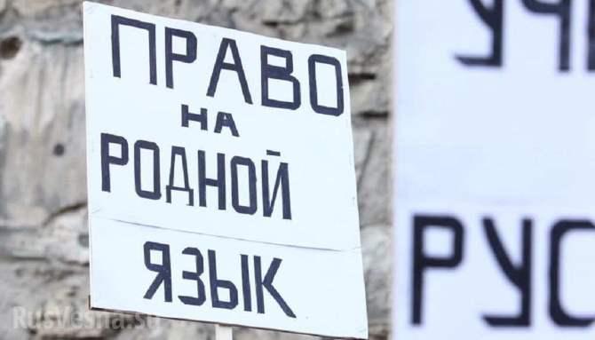 «ЗаУшакова»: Ратушная площадь пестрит плакатами вподдержку главы города