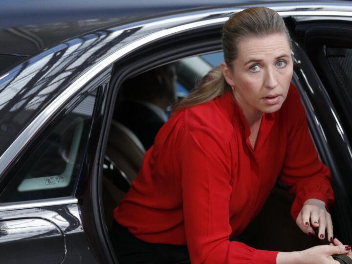 Премьер-министр Дании высмеял слезливые извинения за драму о норке