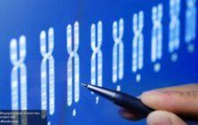 orig-710x4001469580218genetekahromosomygeny-1469580218